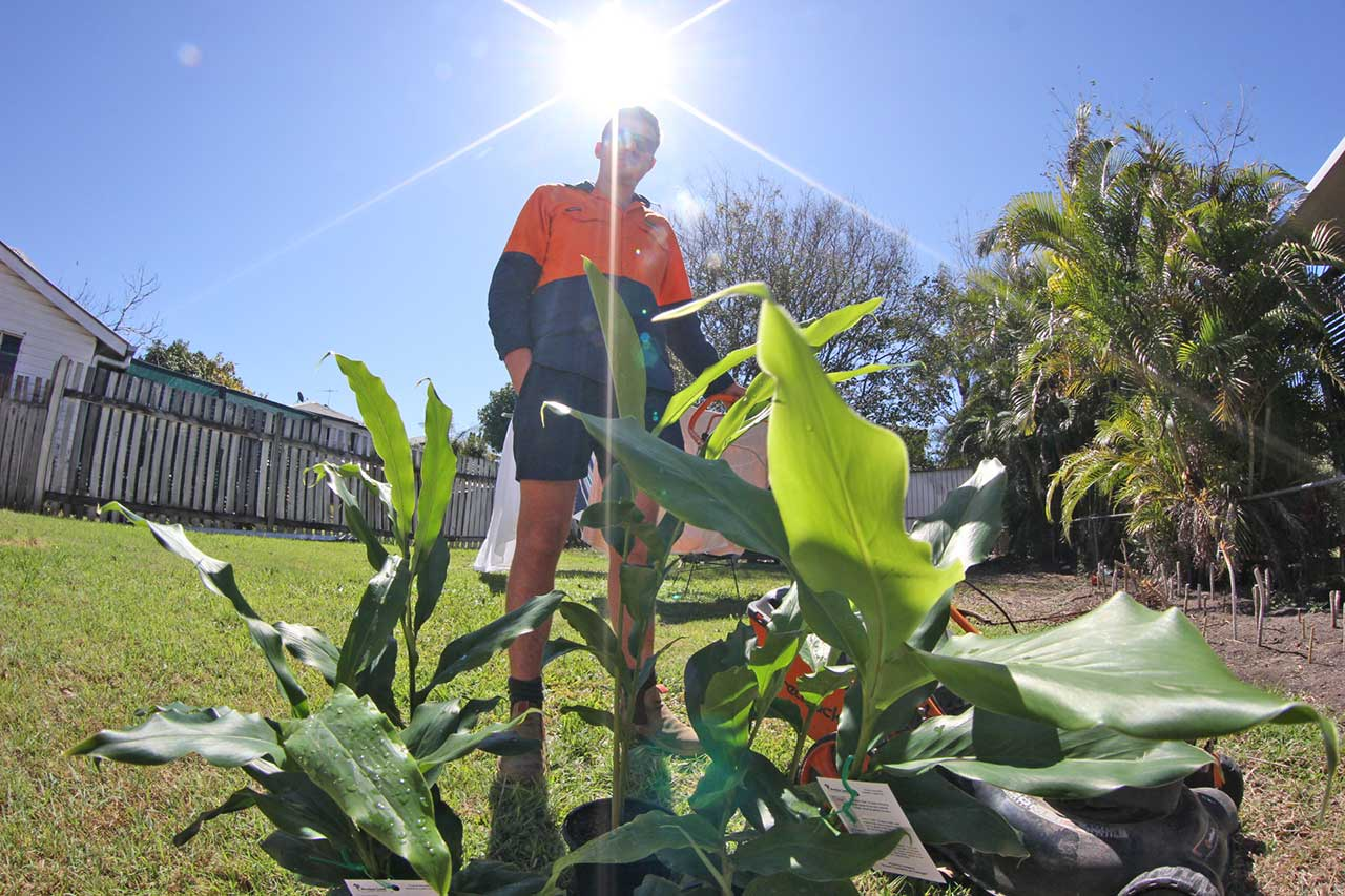 Nundah lawn and garden owner kent